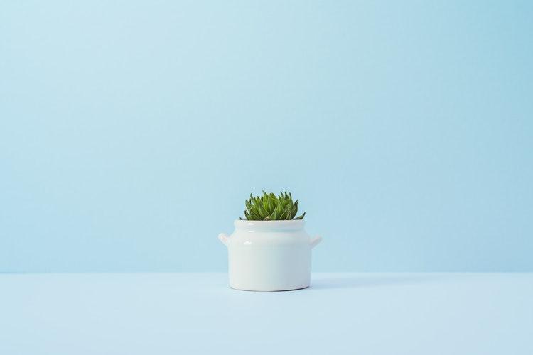 5 råd til at friske dit hjem op med tapet