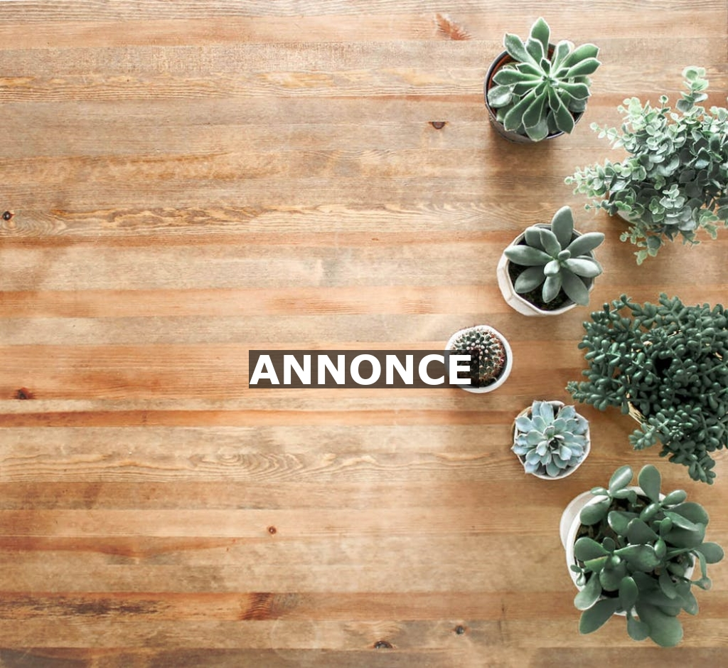 Gør dit hus sommerklart med et nyt gulv