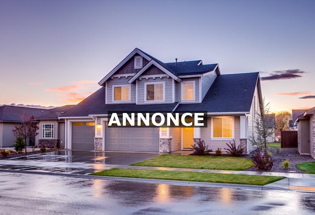 Lad ikke penge begrænse dine boligdrømme