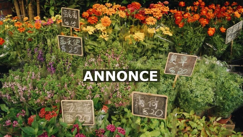 Mangler du nye ting til haven?